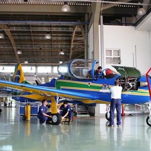 Manutenção de aeronaves em célula